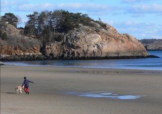 Singing beach