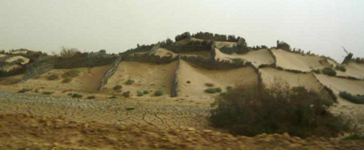 Cheb dunes