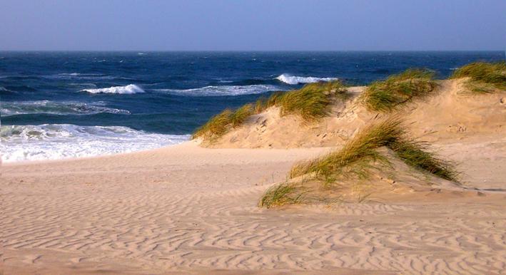 Sylt dunes 1