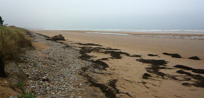 Normandy4