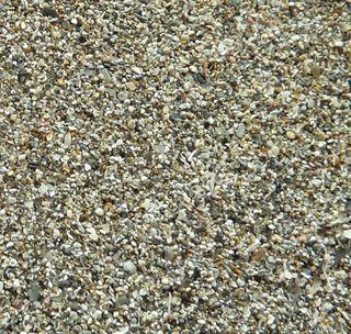 Kaminia sand2