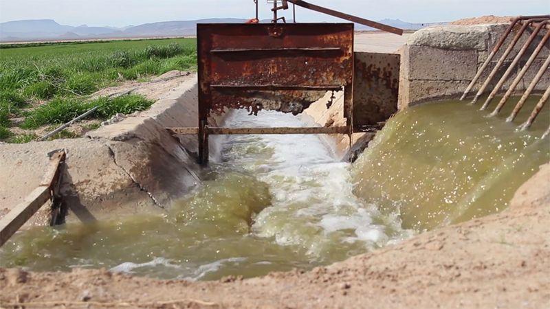 Almarai water