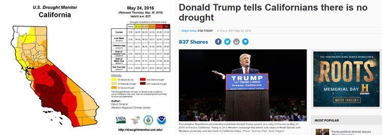 California Trump
