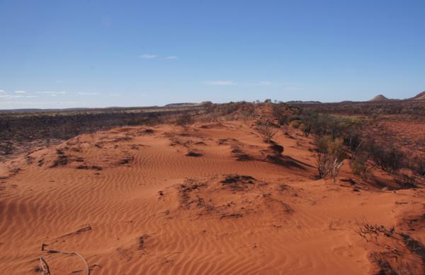 Georgia Bore dunes 1