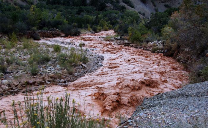 Zion flood